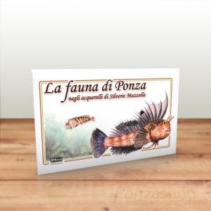 la-fauna-di-ponza-silverio-mazzella